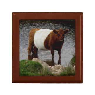 Dartmoorはギャロウェー牛永続的な川にベルトを付けました ギフトボックス