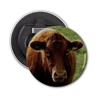 Dartmoor南にデボン牛見ること 栓抜き