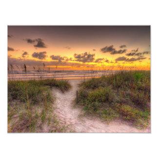 Daytona Beachの砂丘上の日の出、FL フォトプリント