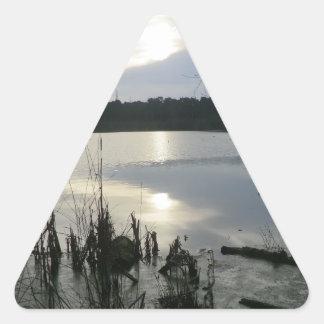Delamereの森林の日没のBlakemereのコケ 三角形シール
