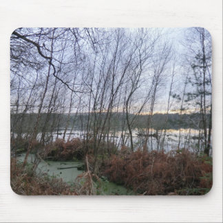 Delamereの森林の沼地そしてBlakemereのコケ マウスパッド