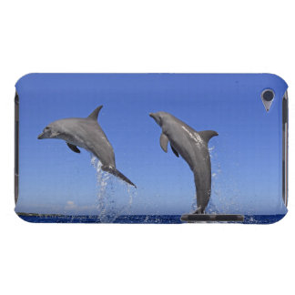 Delfin 2 Case-Mate iPod touch ケース