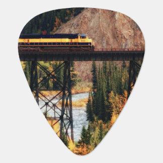 Denaliの国立公園およびジャム米国アラスカ ギターピック