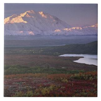 - Denaliの国立公園の9月を早く取られる タイル