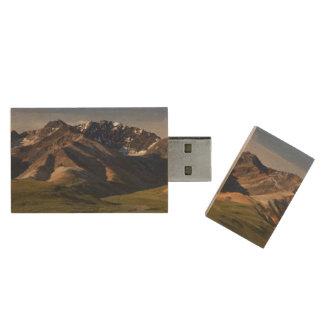 Denaliの国立公園 ウッドUSBフラッシュドライブ