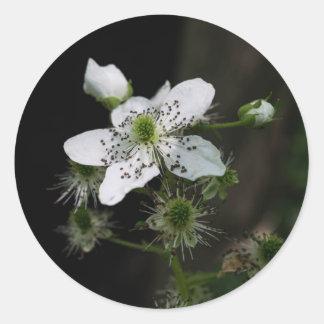 Dewberryの野生の花のステッカー ラウンドシール