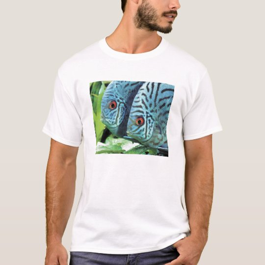 Discusfishのアパレル Tシャツ