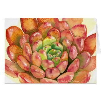 DLBによる水気が多いSedeveria 「ピンクのルビー色の」水彩画 カード