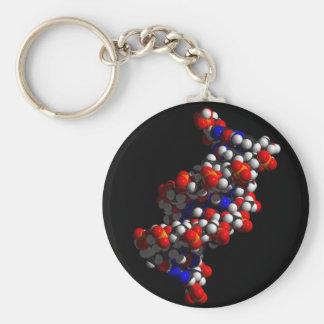 DNAの二重螺旋モデル キーホルダー