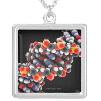 DNAの分子。 DNAの分子モデル シルバープレートネックレス