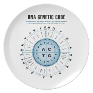 DNAの遺伝コードの図表 プレート