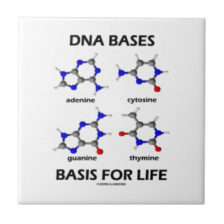 DNAは基づかせています生命(分子構造)のための基礎を タイル