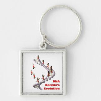 DNAダーウィンの進化 キーホルダー