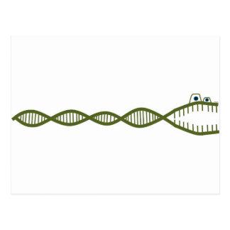 DNA ポストカード