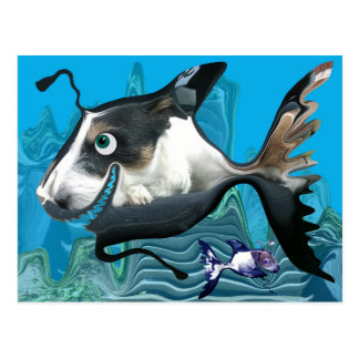 Dogfish礁 ポストカード