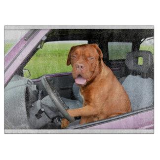 Dogue de Bordeauxの運転 カッティングボード