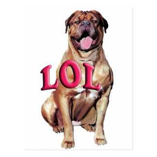 Dogue de Bordeaux LOL ポストカード