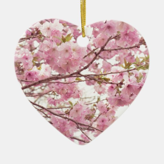 Double cherry blossoms in Japan セラミックオーナメント