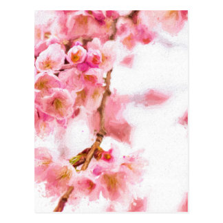 dreaming sakura ポストカード