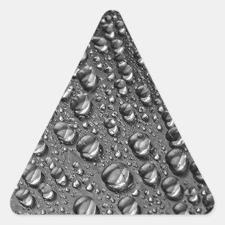 DSC00188.jpg 三角形シール