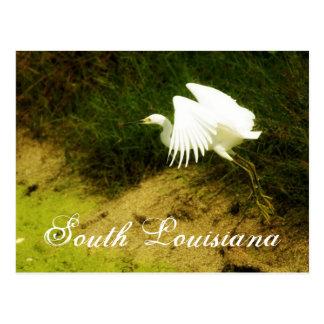 DSC08779bb、南ルイジアナ ポストカード