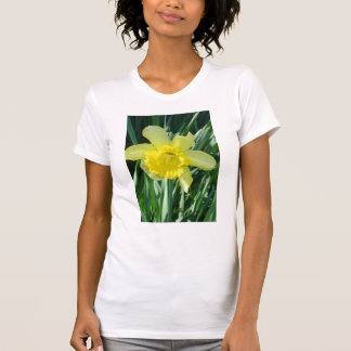 DSC08889ラッパスイセンの緑の葉 Tシャツ