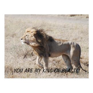DSC_0233の私の百獣の王です! ポストカード