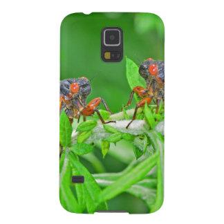 DSC_3480ps.jpg Galaxy S5 ケース