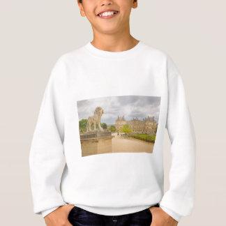 DSC_5921-52 スウェットシャツ