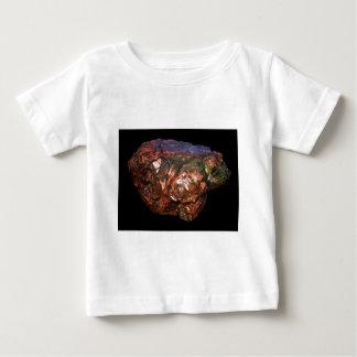 DSCN0020 ベビーTシャツ