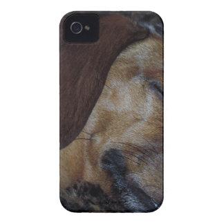 DSCN1213 (2).tif Case-Mate iPhone 4 ケース
