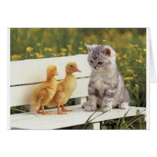 Duckheapおよび友人のインタビューの子ネコ グリーティングカード