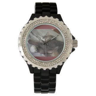 Duri野生猫の昼寝の時間! 腕時計