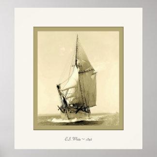 E.I. 白い~の1896年の~のヴィンテージの写真 ポスター