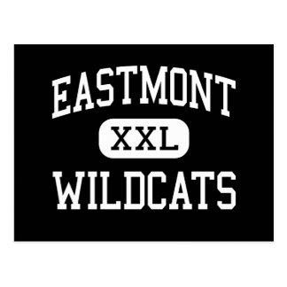 Eastmont -山猫-高東のWenatchee ポストカード