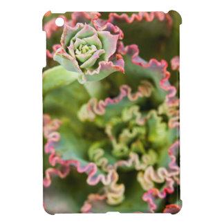 Echeveriaの植物の出現の芽 iPad Mini Case