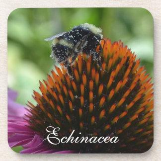 Echinaceaおよび蜂のコースターセット コースター