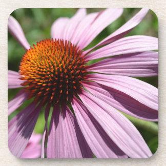 Echinaceaのコースターセットを夢を見て下さい、元気を与えて下さい、作成して下さい コースター