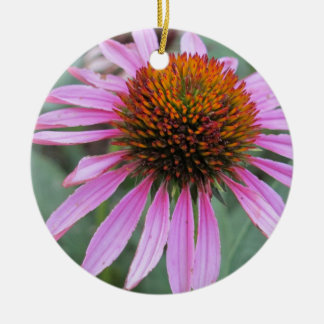 Echinaceaの花 セラミックオーナメント