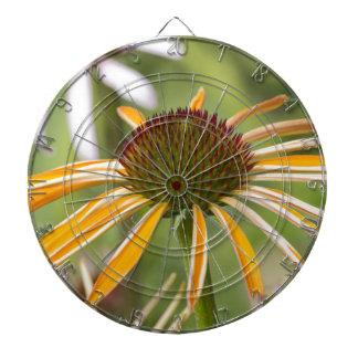 echinacea ダーツボード