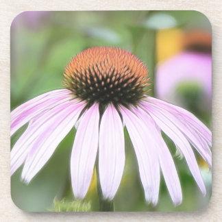Echinacea -マグナス コースター