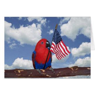 Eclectus米国の旗 -- 小さい カード