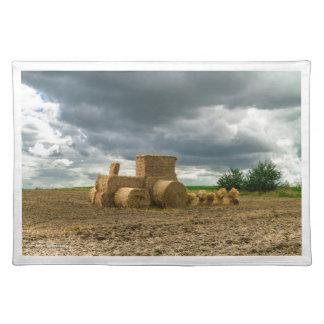 ECOの農業-ランチョンマット ランチョンマット