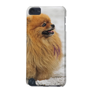 Edgrrrr #3 -ポメラニア犬 iPod touch 5G ケース