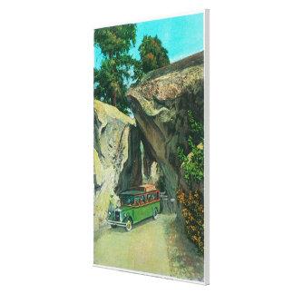 Elの入口の道のアーチの石の下の観光バス キャンバスプリント