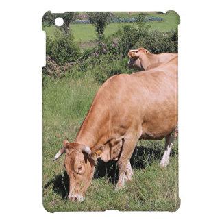 El Camino、スペインの分野の牛 iPad Mini Case