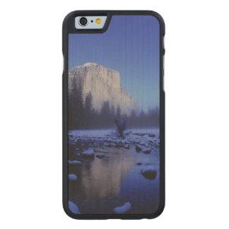 El Capitan山、ヨセミテ国立公園、 ケース