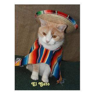 El Gato Bubba ポストカード