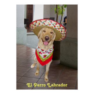 El Perro ポスター