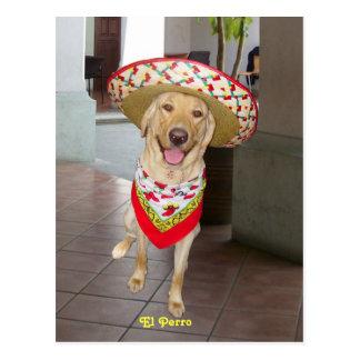El Perro ポストカード